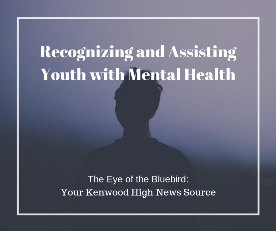 Recognizing+and+Assisting+Youth+with+Mental+Health
