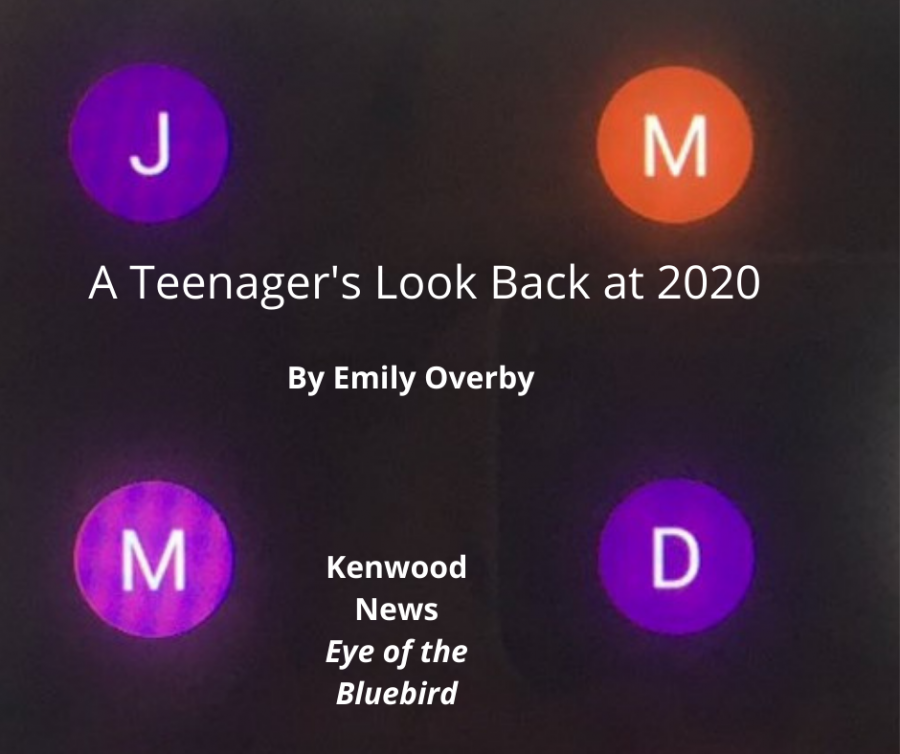A Teenager's Look Back at 2020