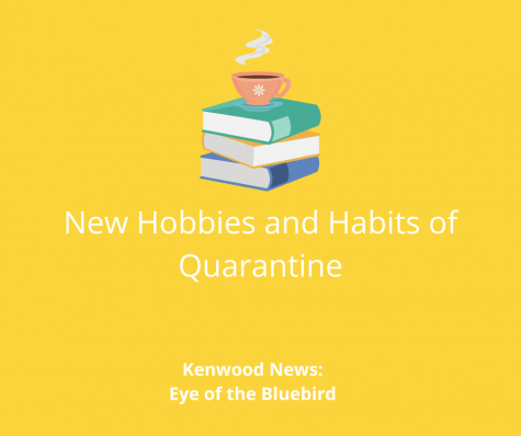 Changing Habits and Hobbies in Quarantine