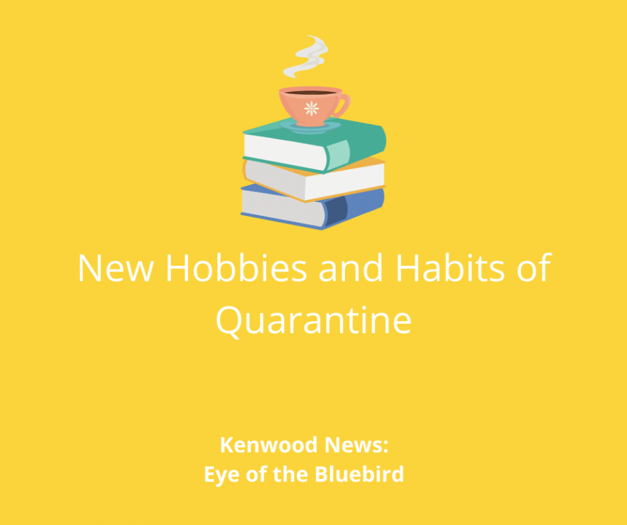 Changing+Habits+and+Hobbies+in+Quarantine