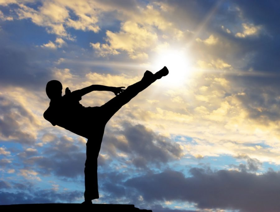 Try Martial Arts to Benefit your Physical and Mental Health in 2021